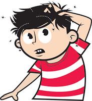 Pedikuloza- swędzący problem