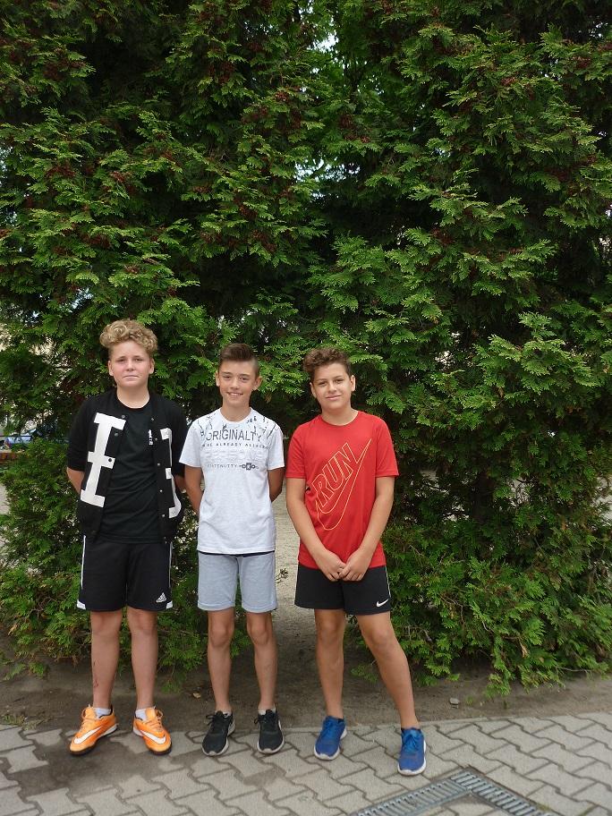 Wojewódzkie Mistrzostwa w Biegu na Orientację