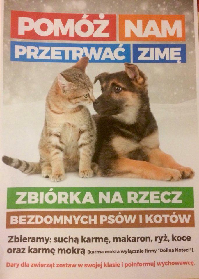 Pomagajmy zwierzętom przetrwać zimę!