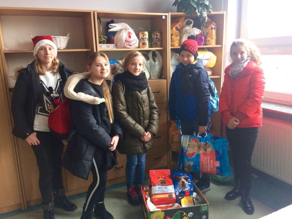 Pomocnicy Świętego Mikołaja z prezentami w schronisku dla zwierząt