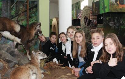 """Sukces naszych uczniów w międzynarodowym konkursie """"Nagroda Młodzieżowa 2020"""""""