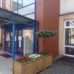 Wejście do szkoły ozdobione donicami z kolorowymi stokrotkami