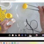 Odkrywamy tajemnice budowy surowego jaja