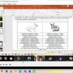 Praca z kartą pracy i tekstem źródłowym